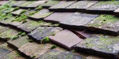 Anglesey roof repair costs